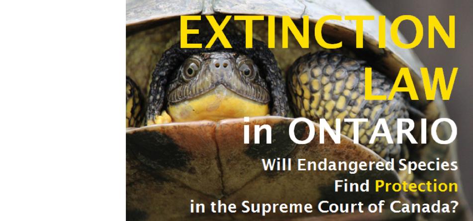 Extinction Law in Ontario